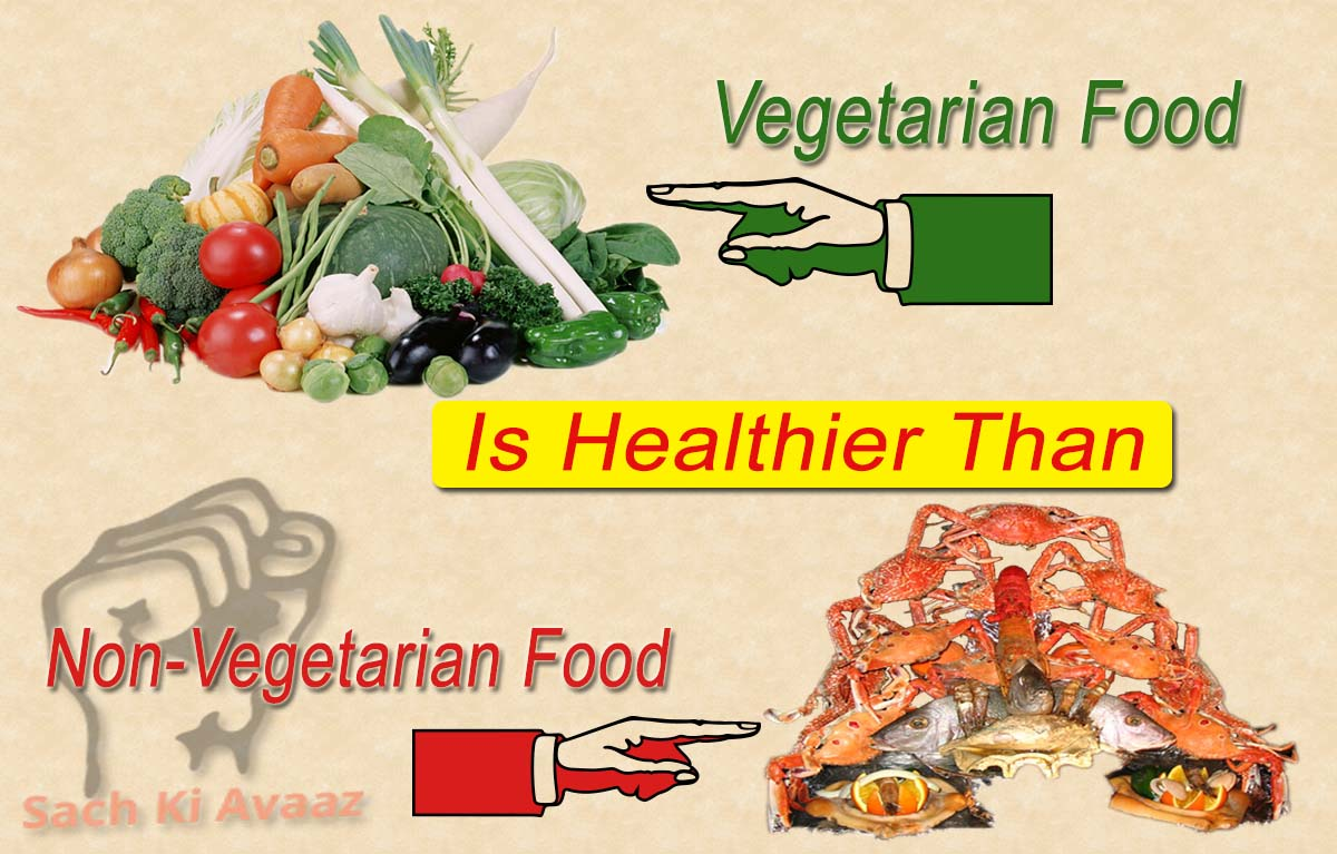 words short essay on vegetarianism and non vegetarianism